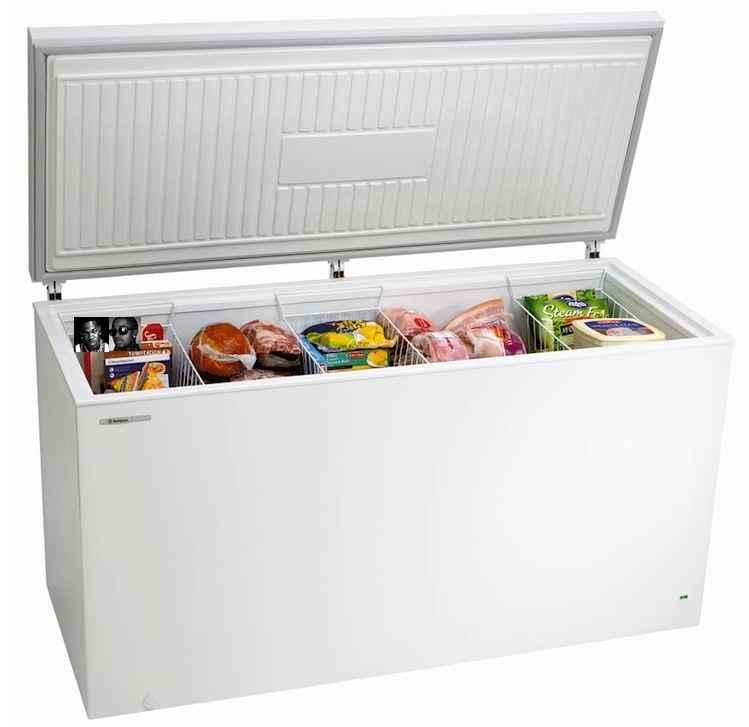 The Freezer (Omarion)